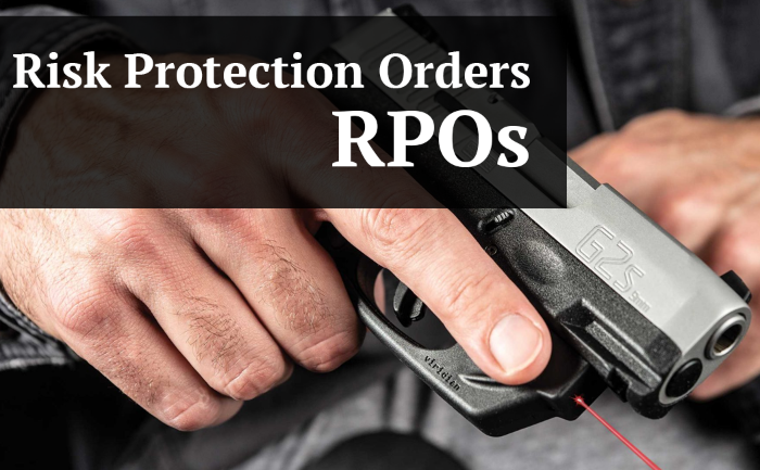Guide to Pinellas County Risk Protection Orders (RPO)